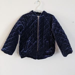 Baby Gap royal/navy blue quilted zip up jacket